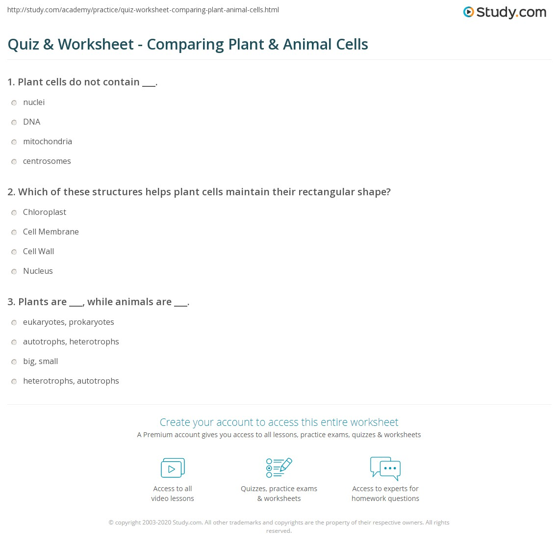worksheet Plant And Animal Cells Worksheets quiz worksheet comparing plant animal cells study com print the difference between and worksheet