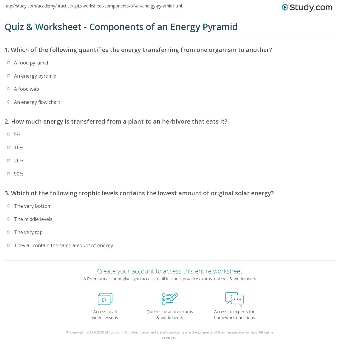 Quiz & Worksheet - Components of an Energy Pyramid | Study.com