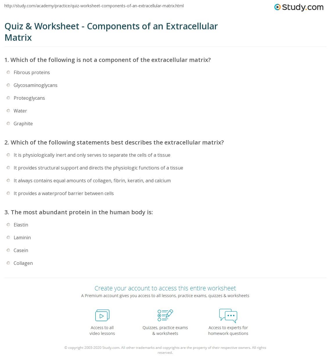 Quiz Worksheet Components of an Extracellular Matrix – Matrix Operations Worksheet