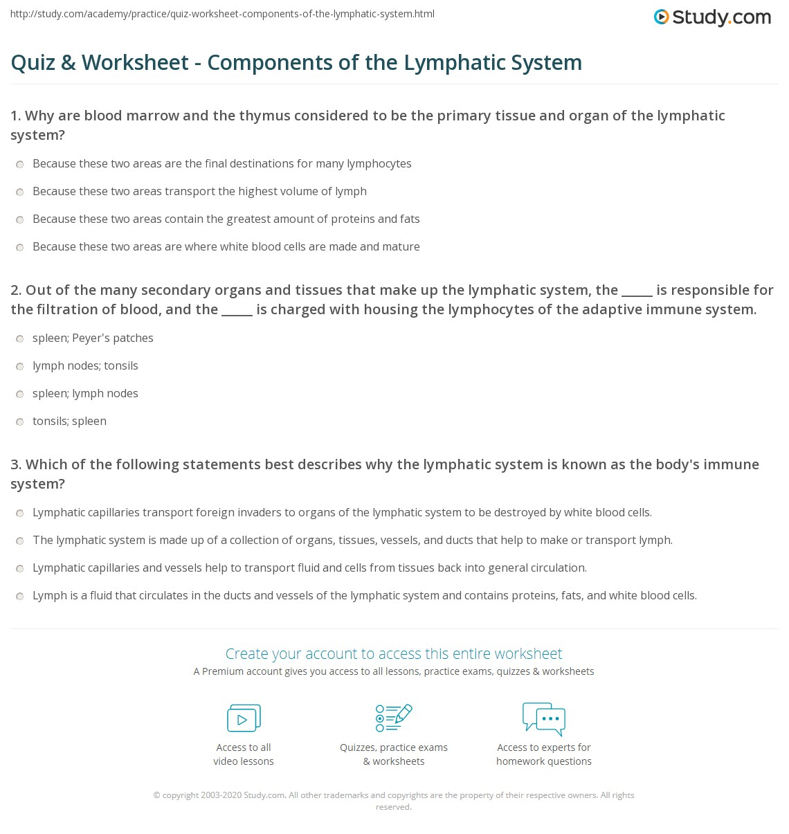 Quiz Worksheet Components Of The Lymphatic System Study