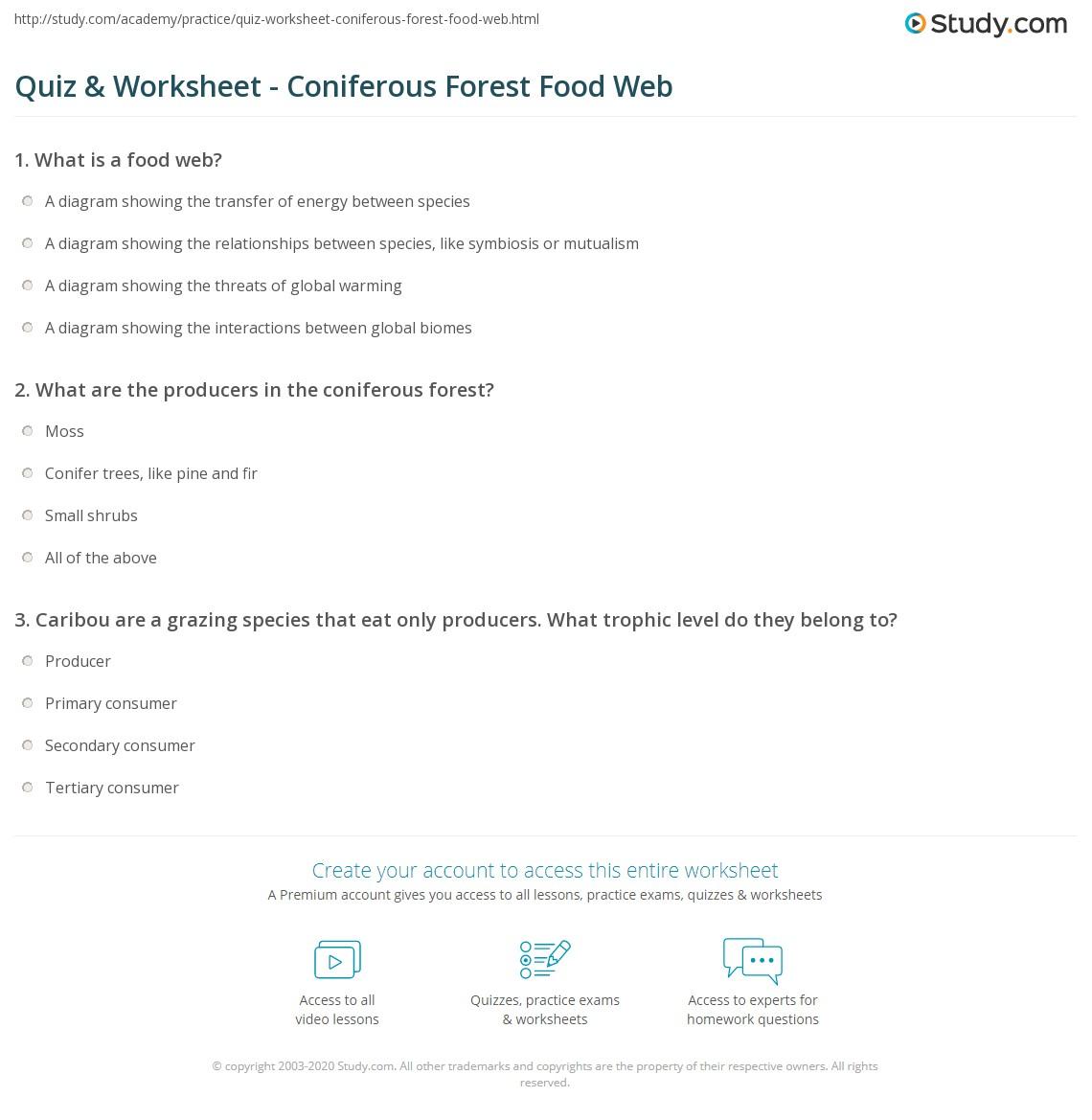 worksheet Food Web Worksheet Answers food web practice worksheet answers printable blog quiz coniferous forest study