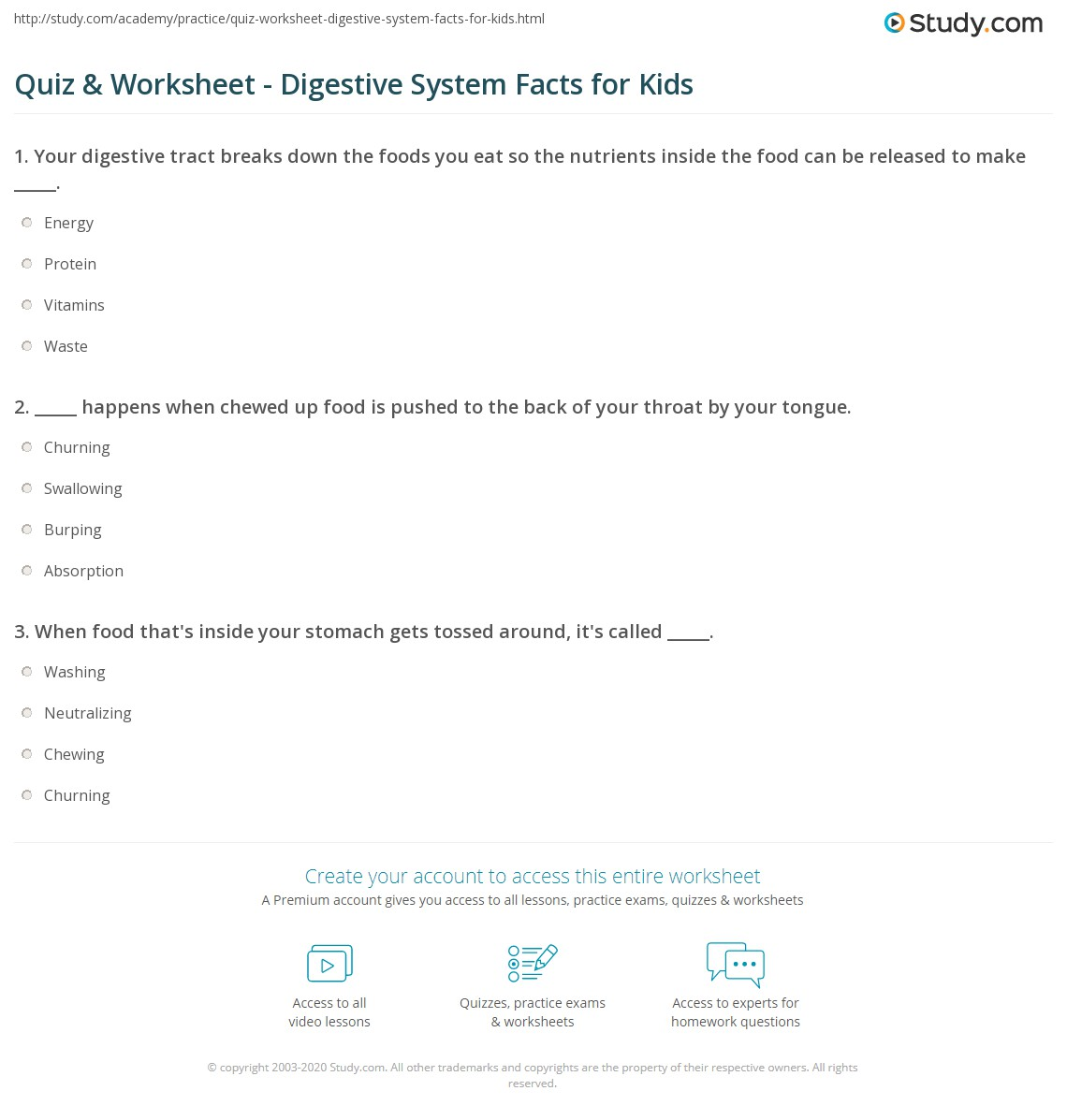 Quiz Worksheet Digestive System Facts For Kids Study