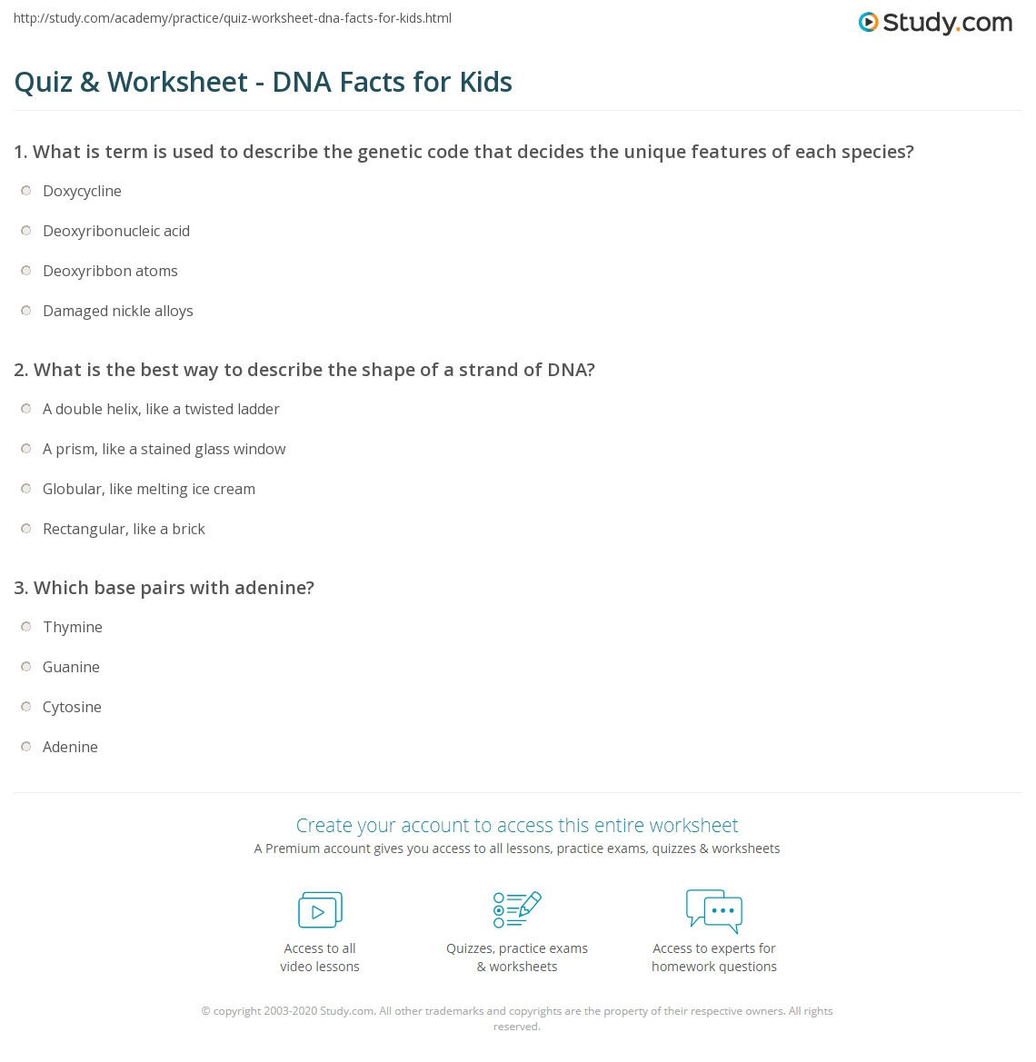 Quiz & Worksheet DNA Facts for Kids