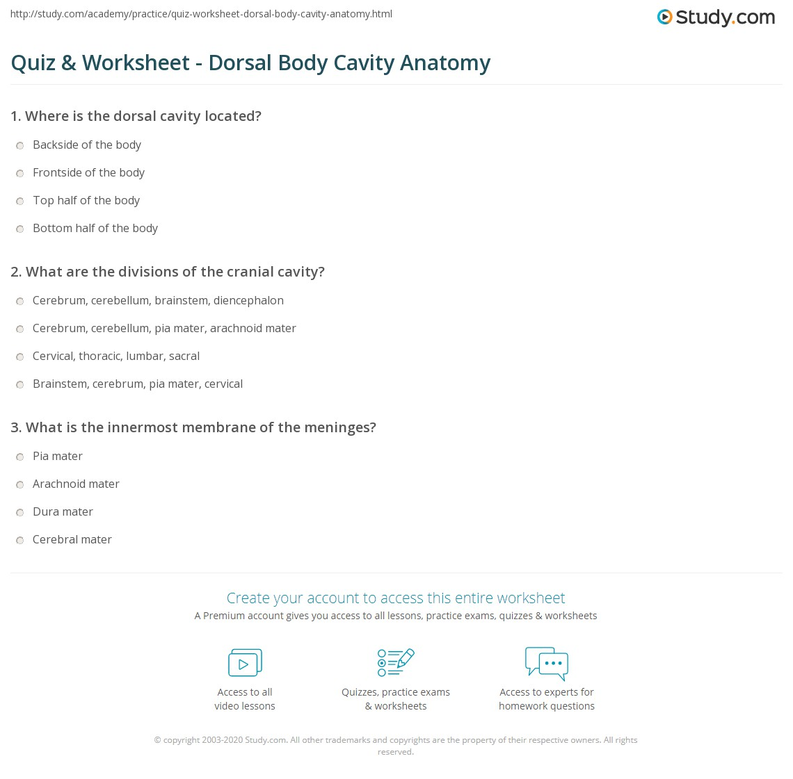 Quiz & Worksheet - Dorsal Body Cavity Anatomy | Study.com