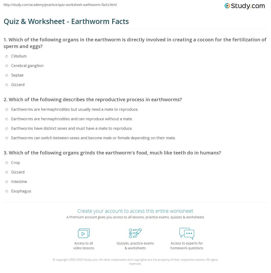 Quiz & Worksheet - Earthworm Facts | Study.com
