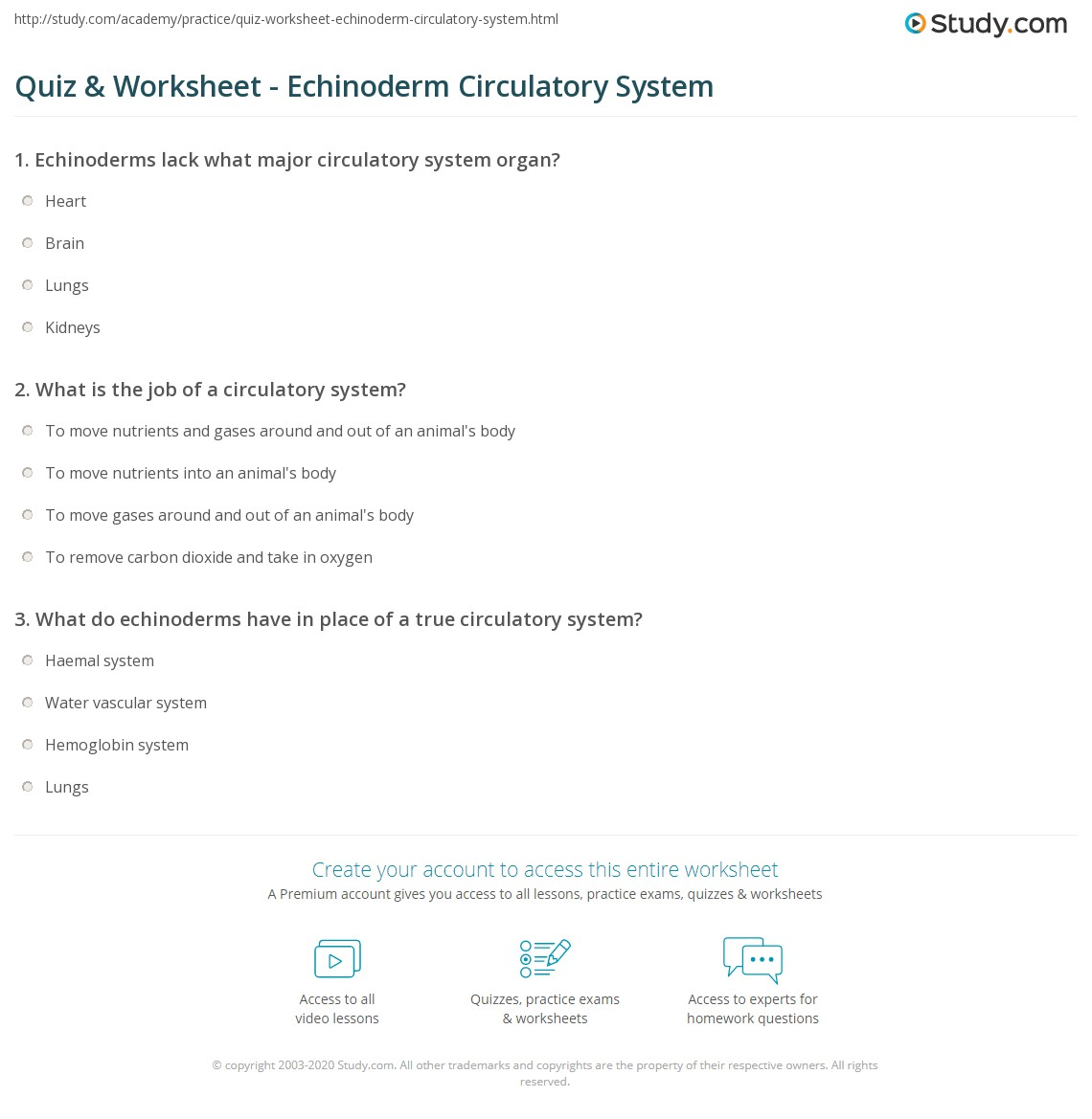 Worksheets Form 8829 Worksheet echinoderm worksheet resultinfos quiz circulatory system study com