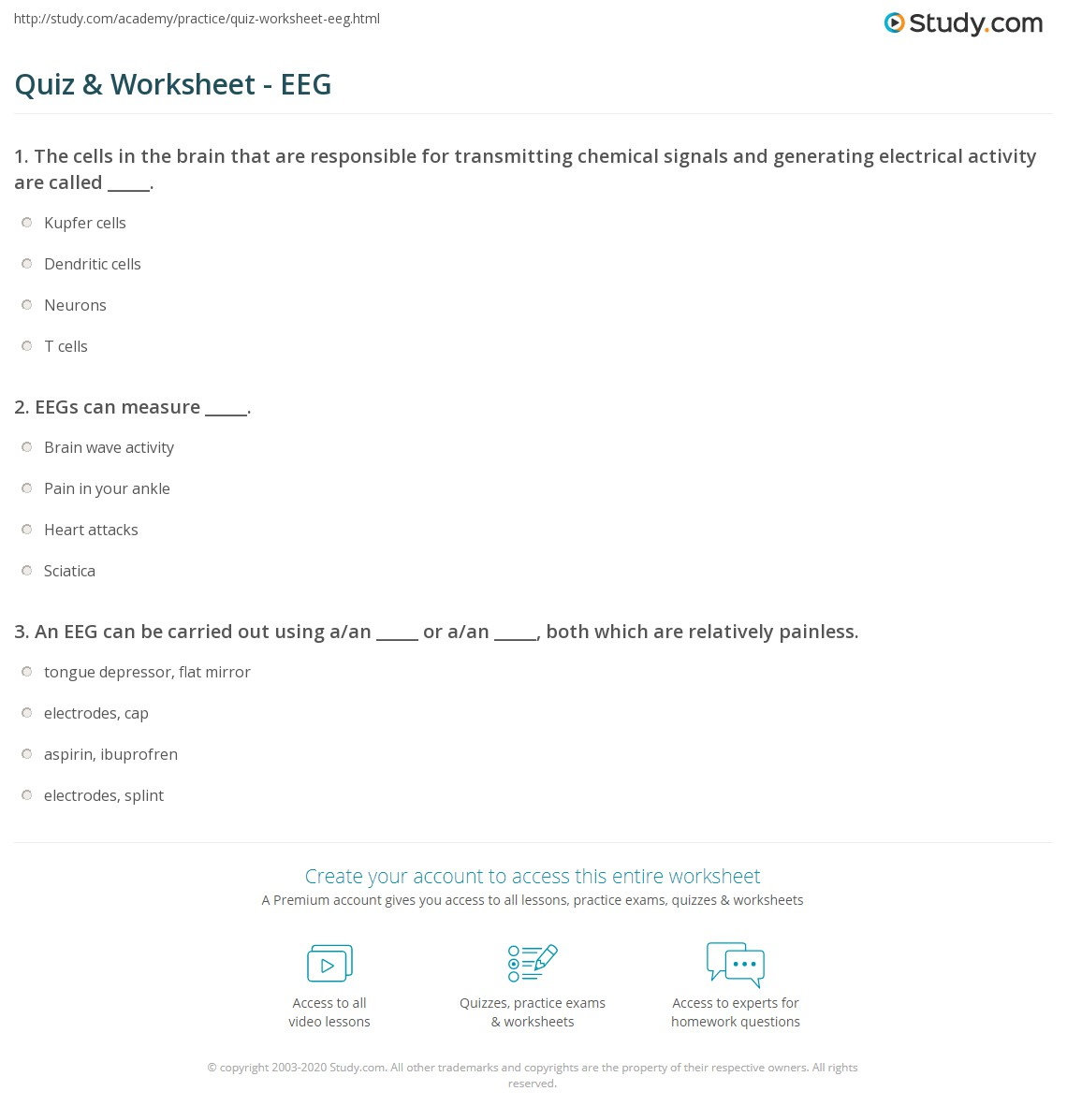 Quiz & Worksheet - EEG | Study.com