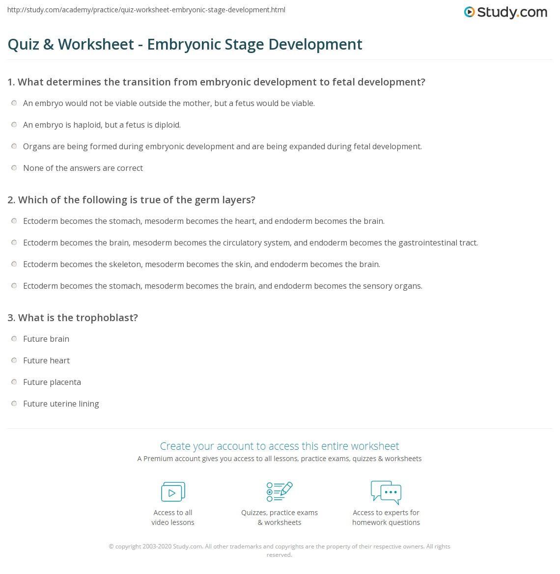 Quiz & Worksheet - Embryonic Stage Development | Study.com