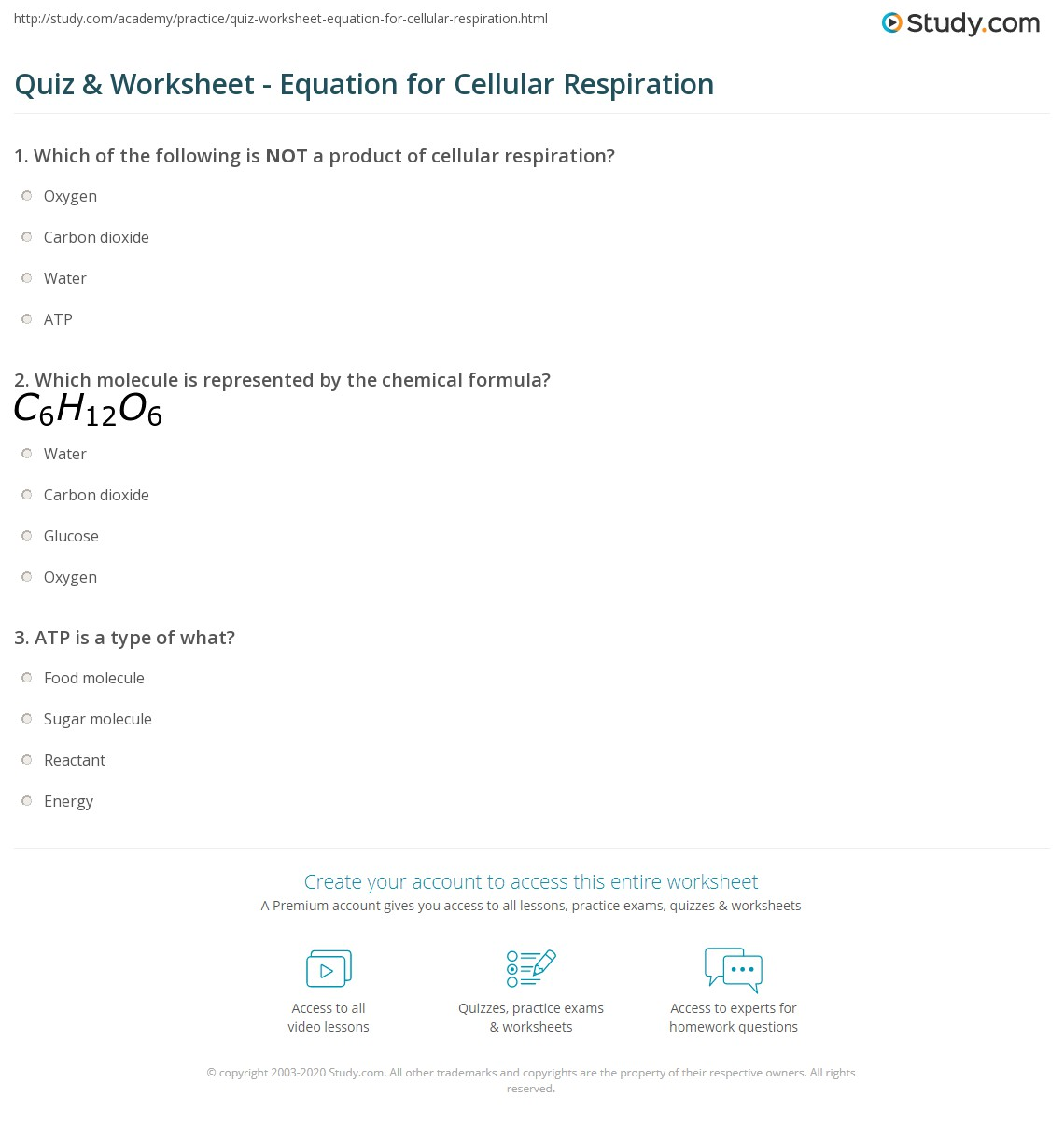 How Do The Chemical Equations For Photosynthesis And Cellular – Comparing Photosynthesis and Cellular Respiration Worksheet