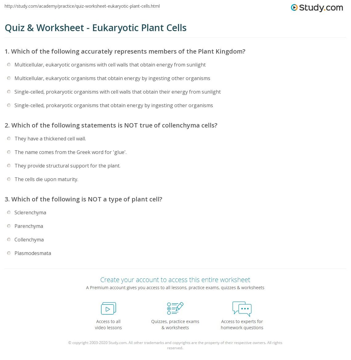 Quiz & Worksheet - Eukaryotic Plant Cells   Study.com