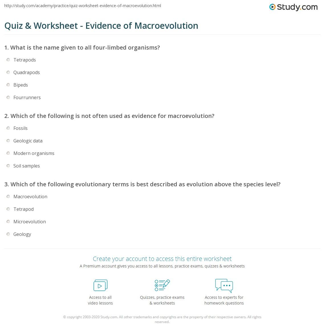 Quiz Worksheet Evidence Of Macroevolution Study