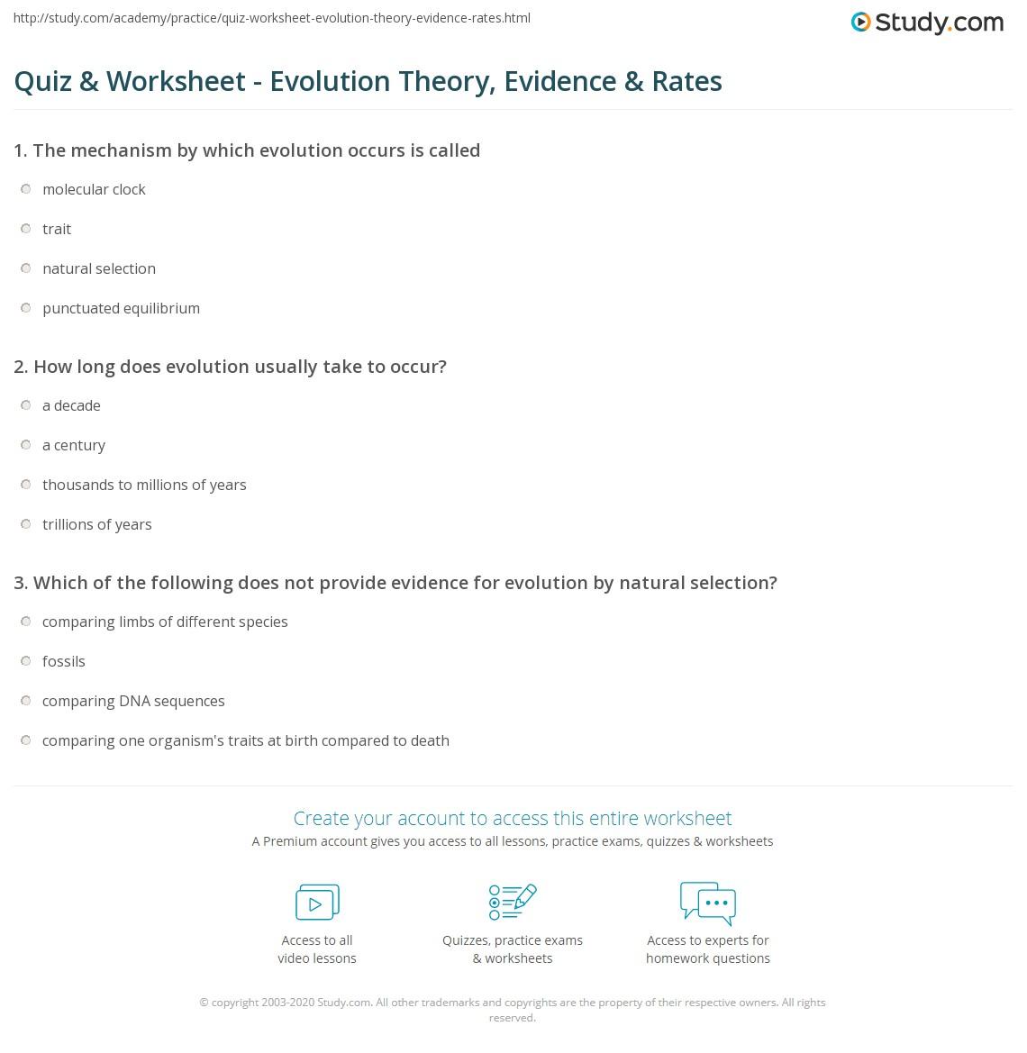 Quiz & Worksheet - Evolution Theory, Evidence & Rates   Study.com