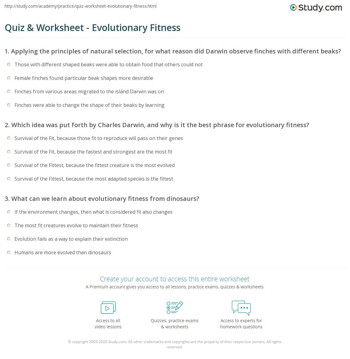 Quiz Worksheet Evolutionary Fitness – Evolution by Natural Selection Worksheet