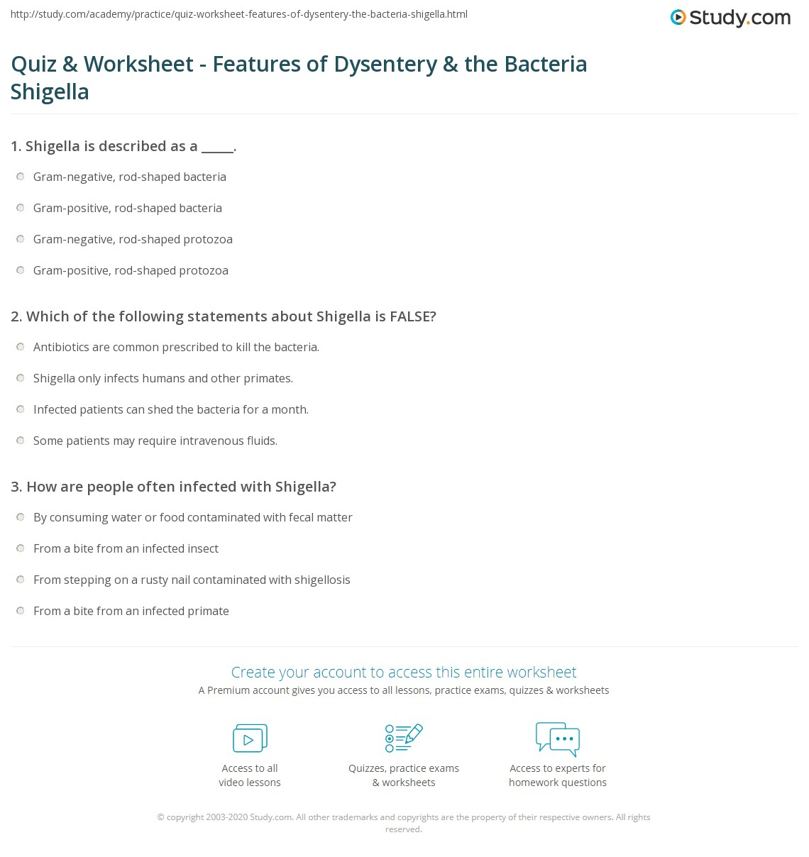 Quiz Worksheet Features Of Dysentery The Bacteria Shigella