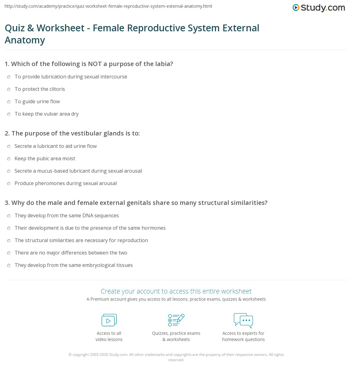 Quiz Worksheet Female Reproductive System External Anatomy