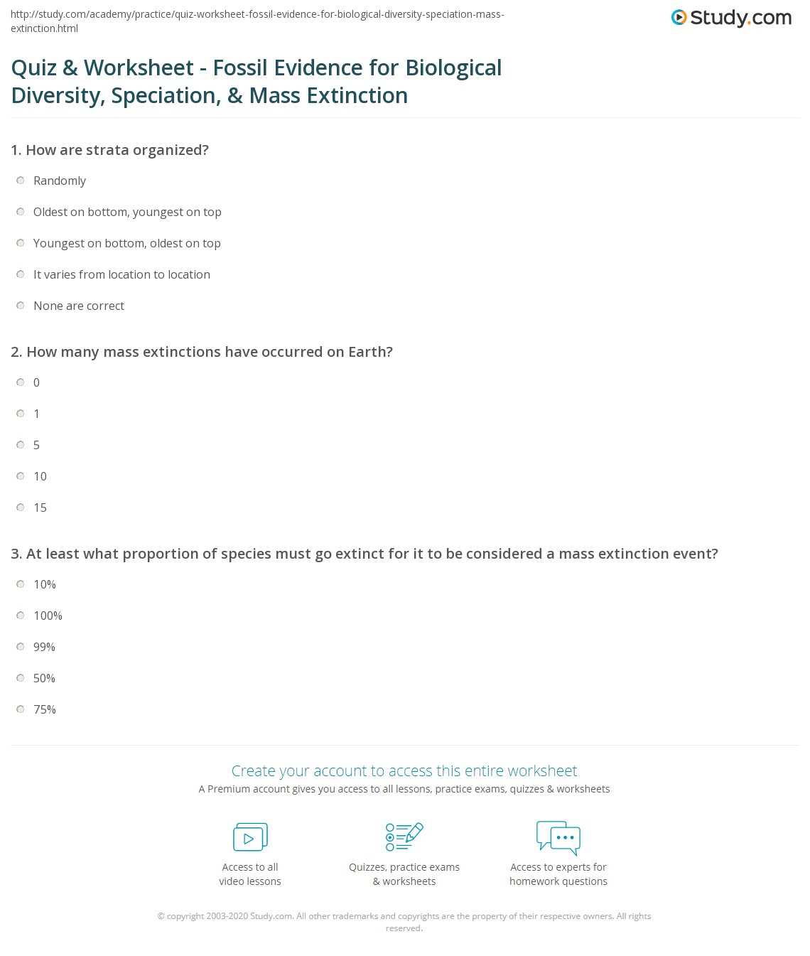 Quiz Worksheet Fossil Evidence For Biological Diversity