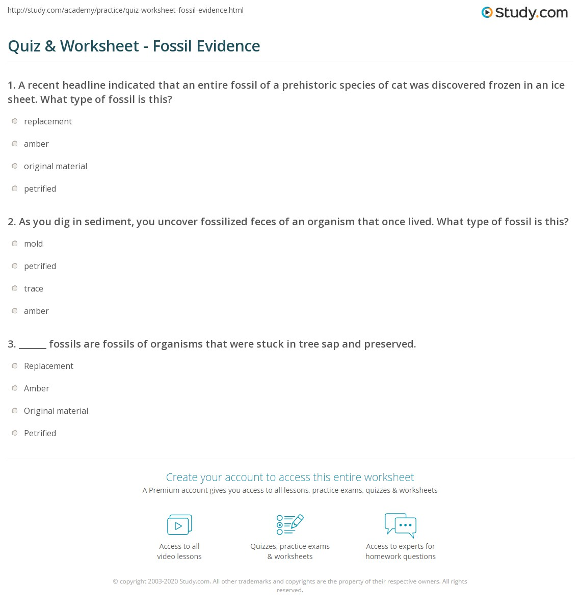 Quiz & Worksheet - Fossil Evidence | Study.com