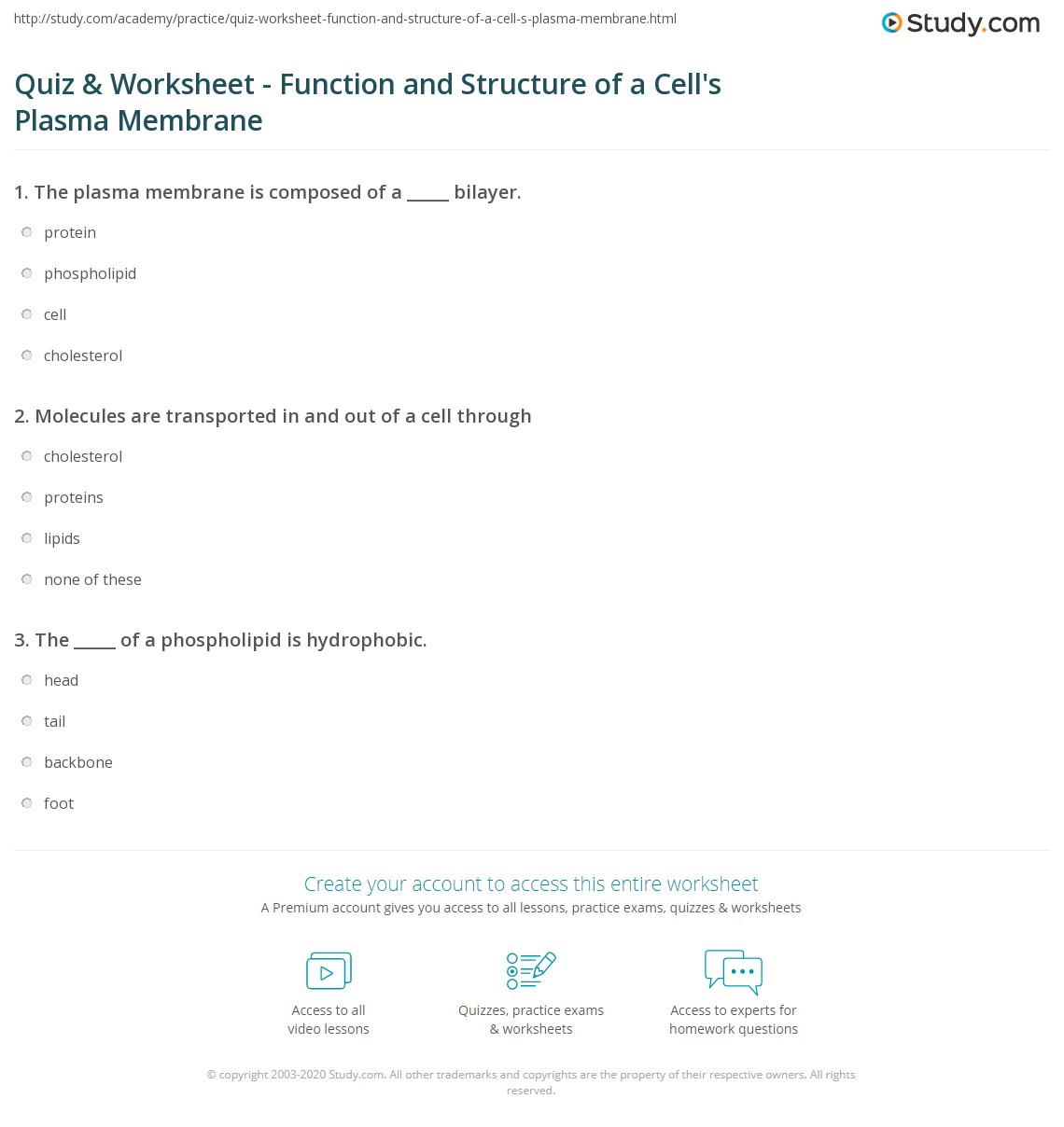 Quiz Worksheet Function And Structure Of A Cells Plasma