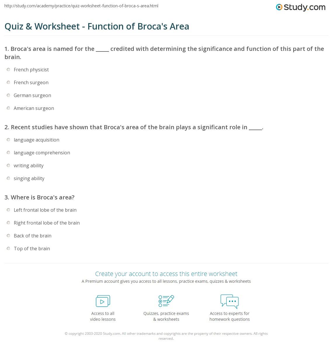 Workbooks math worksheets area : Quiz & Worksheet - Function of Broca's Area   Study.com