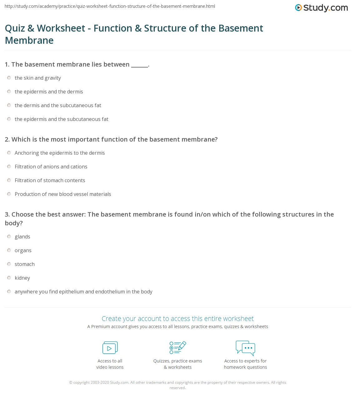 Workbooks parallel structure worksheets : Quiz & Worksheet - Function & Structure of the Basement Membrane ...