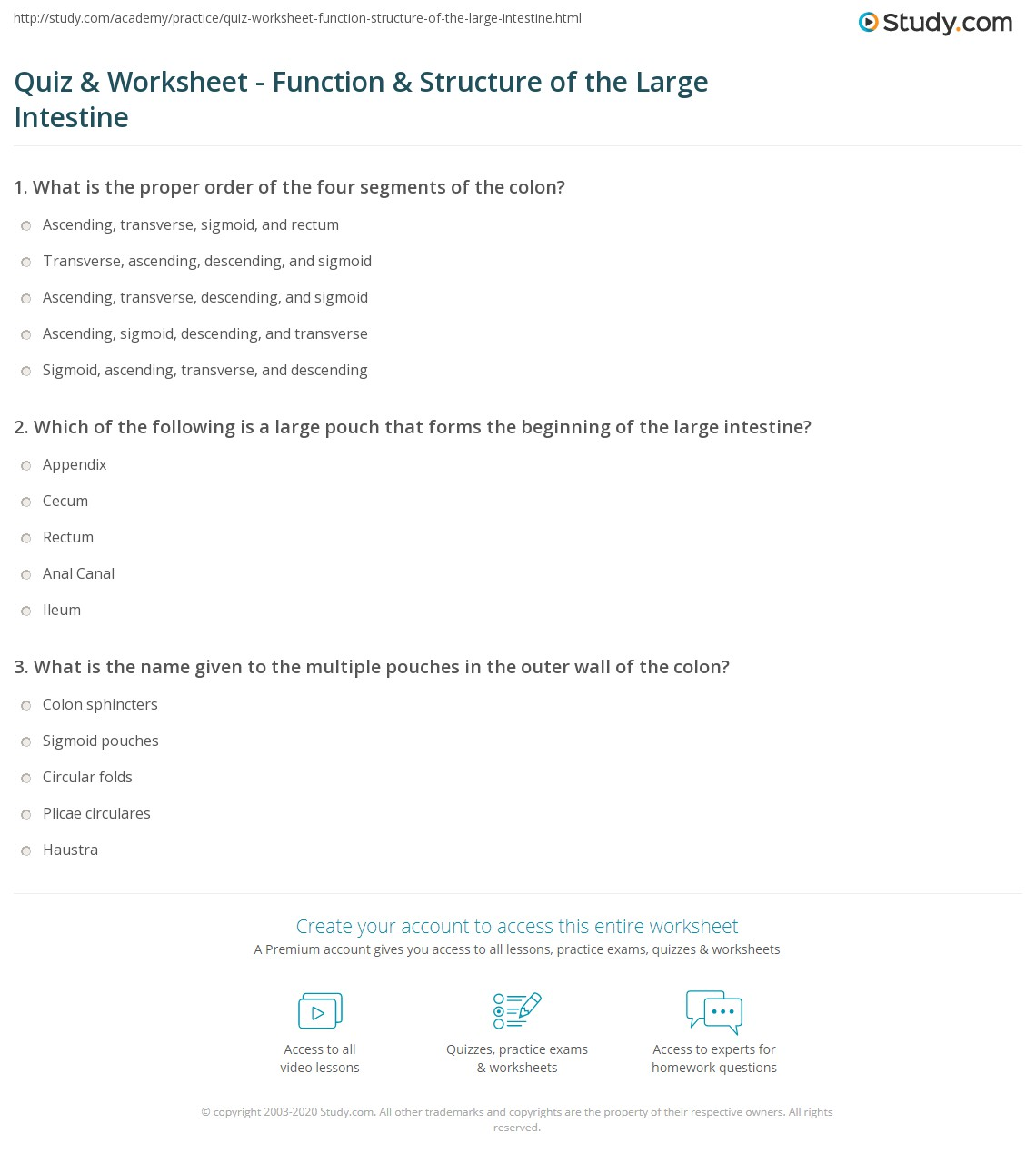 Quiz Worksheet Function Structure Of The Large Intestine