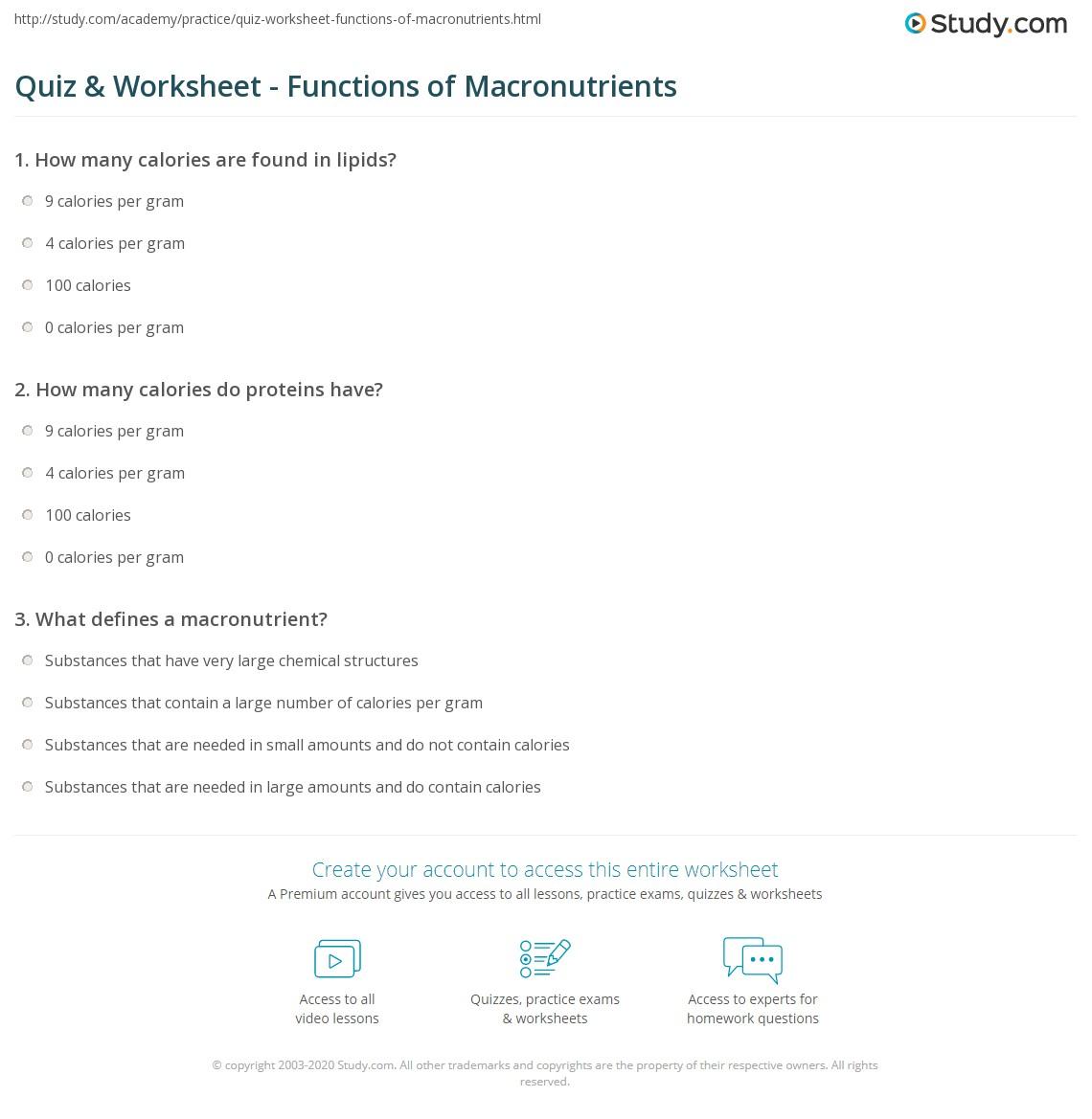 Quiz & Worksheet - Functions of Macronutrients   Study.com