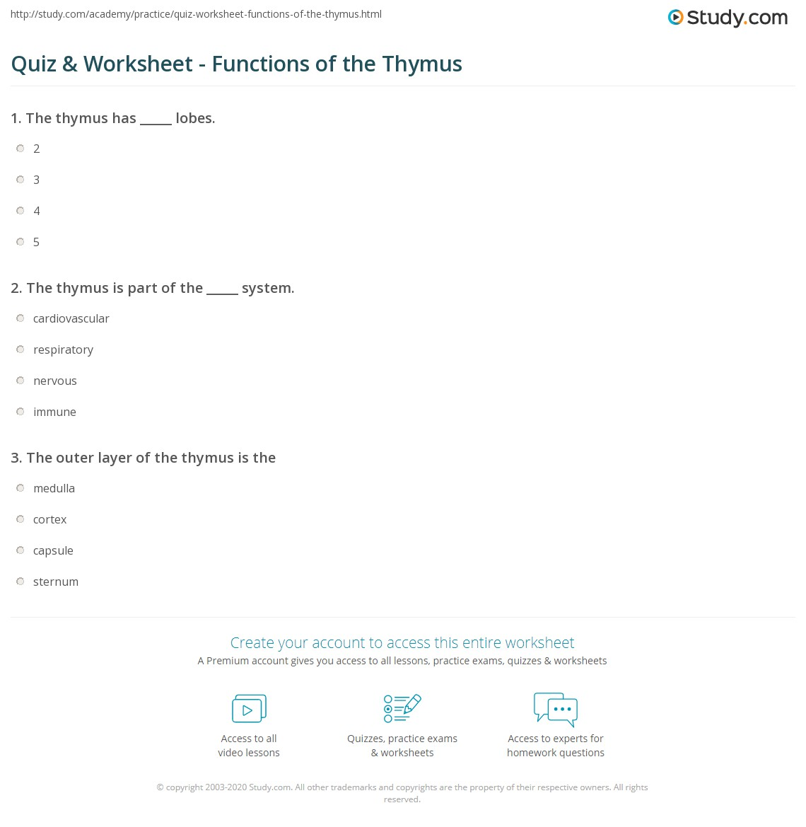 Quiz & Worksheet - Functions of the Thymus | Study.com