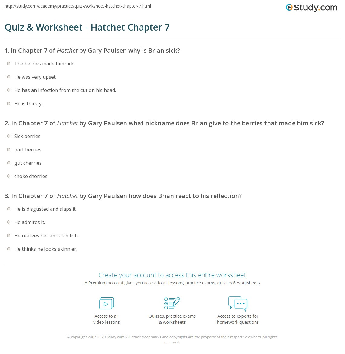 Printables Hatchet Worksheets quiz worksheet hatchet chapter 7 study com print summary worksheet