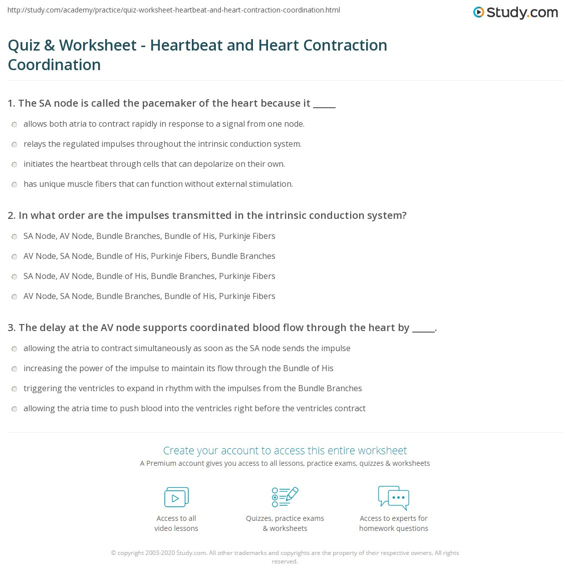 quiz worksheet heartbeat and heart contraction coordination. Black Bedroom Furniture Sets. Home Design Ideas
