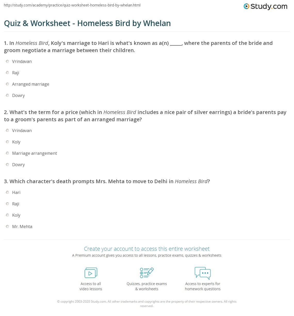 Quiz Worksheet Homeless Bird By Whelan Study Com