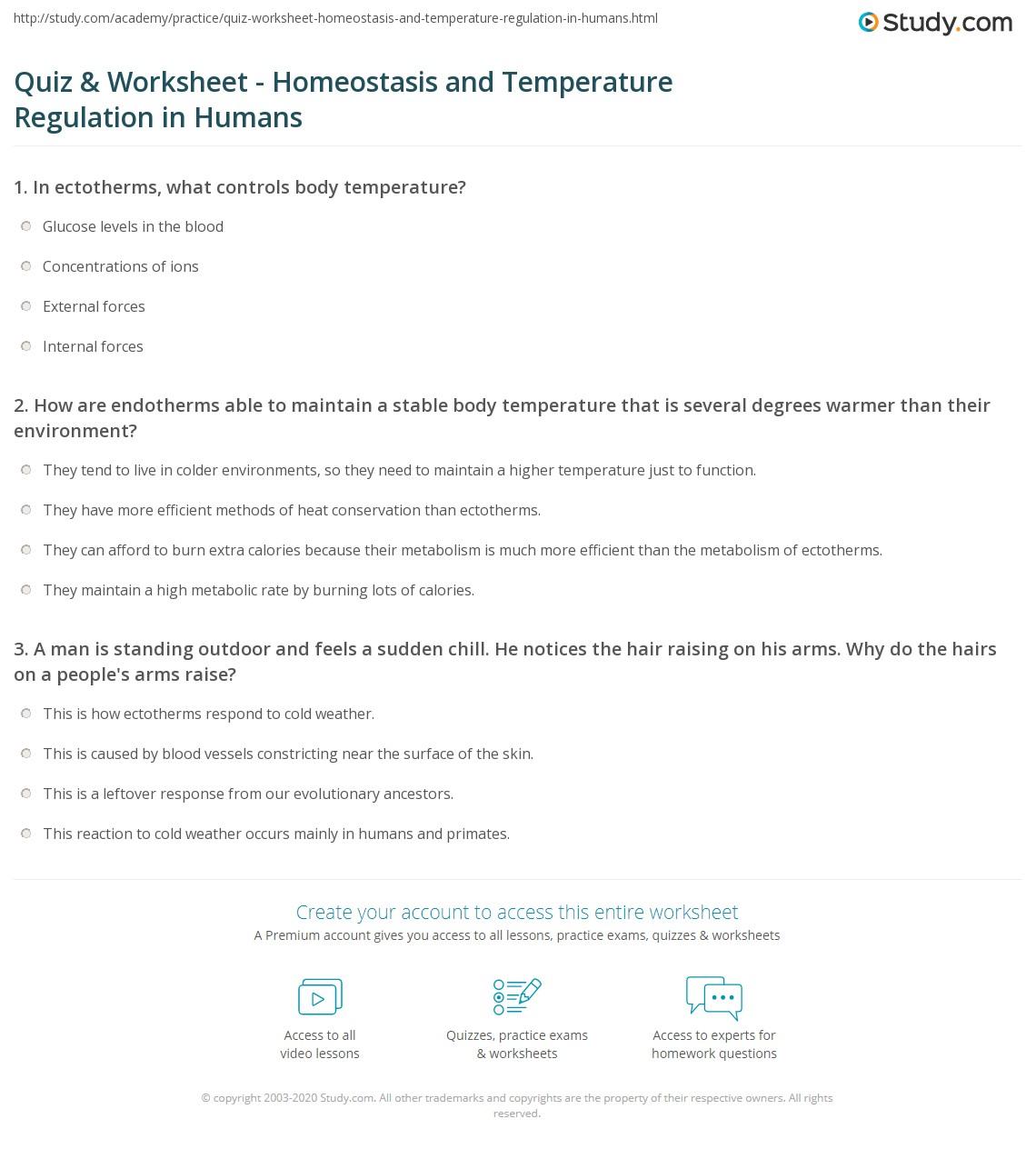 Quiz Worksheet Homeostasis and Temperature Regulation in – Homeostasis Worksheet