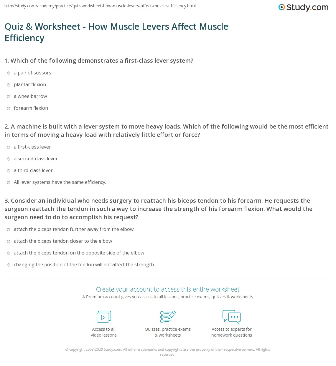 Quiz Worksheet How Muscle Levers Affect Muscle Efficiency
