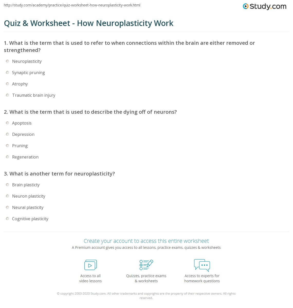 quiz & worksheet - how neuroplasticity work | study