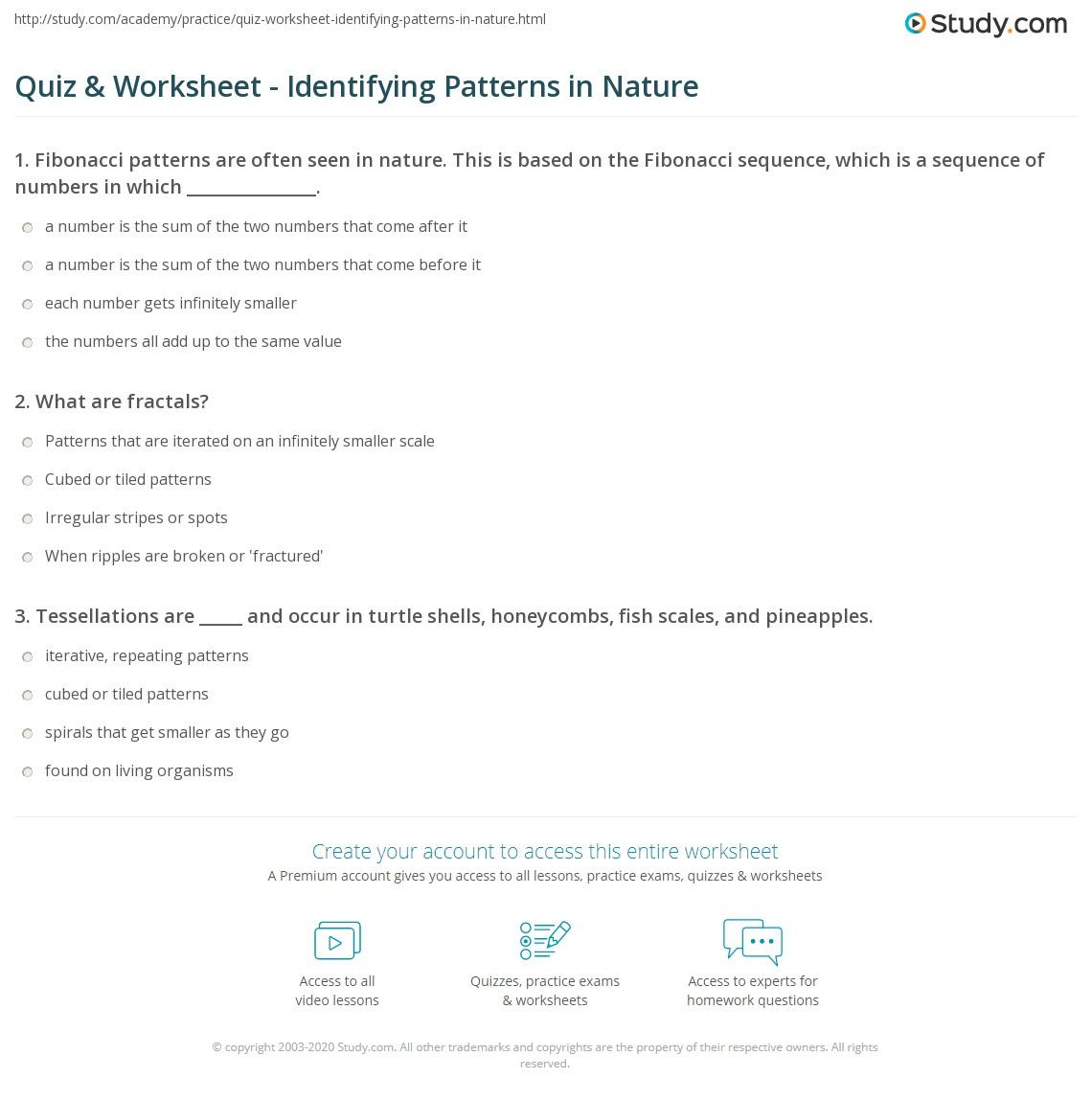 quiz worksheet identifying patterns in nature. Black Bedroom Furniture Sets. Home Design Ideas