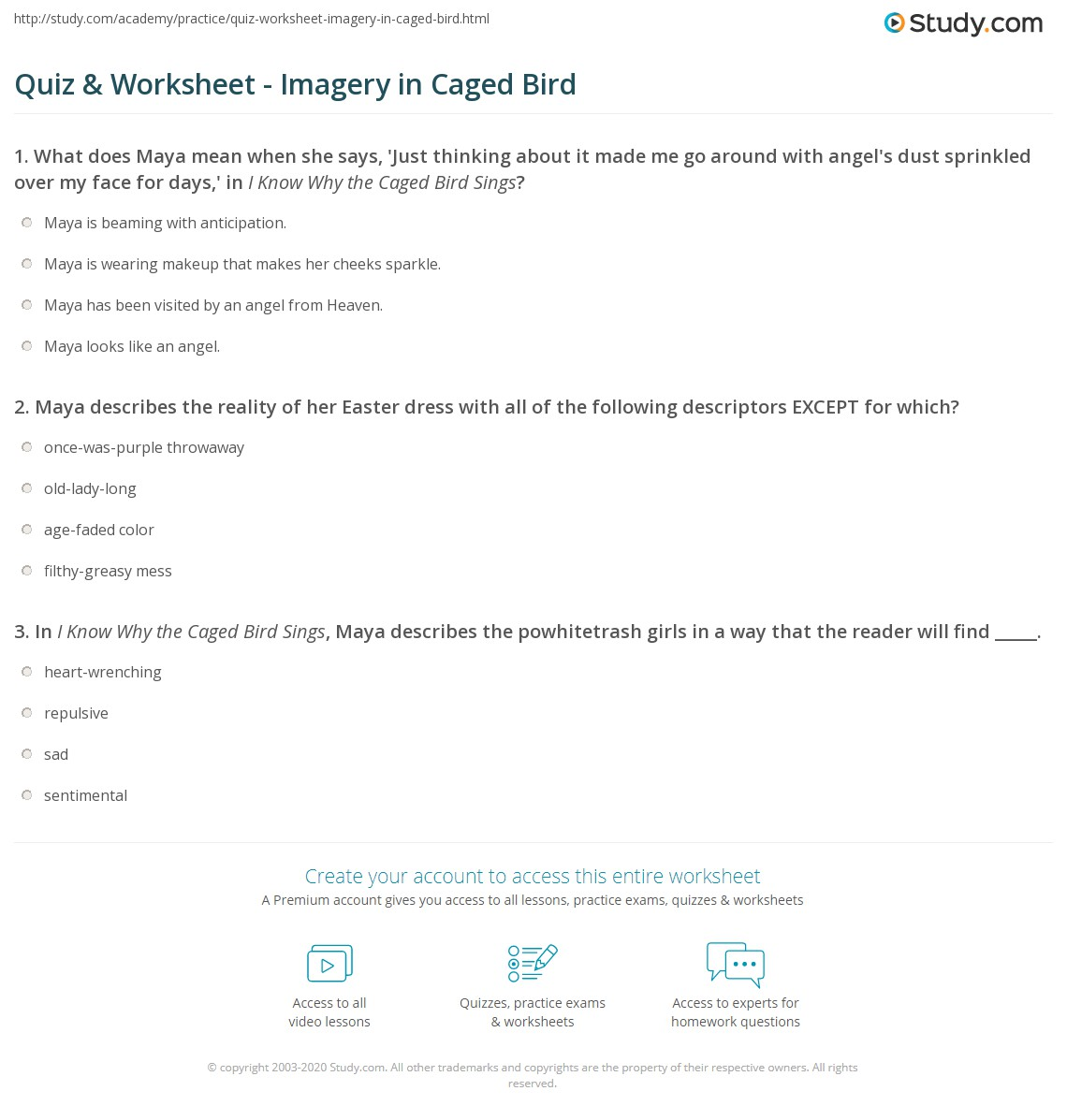 Quiz Worksheet Imagery In Caged Bird Study