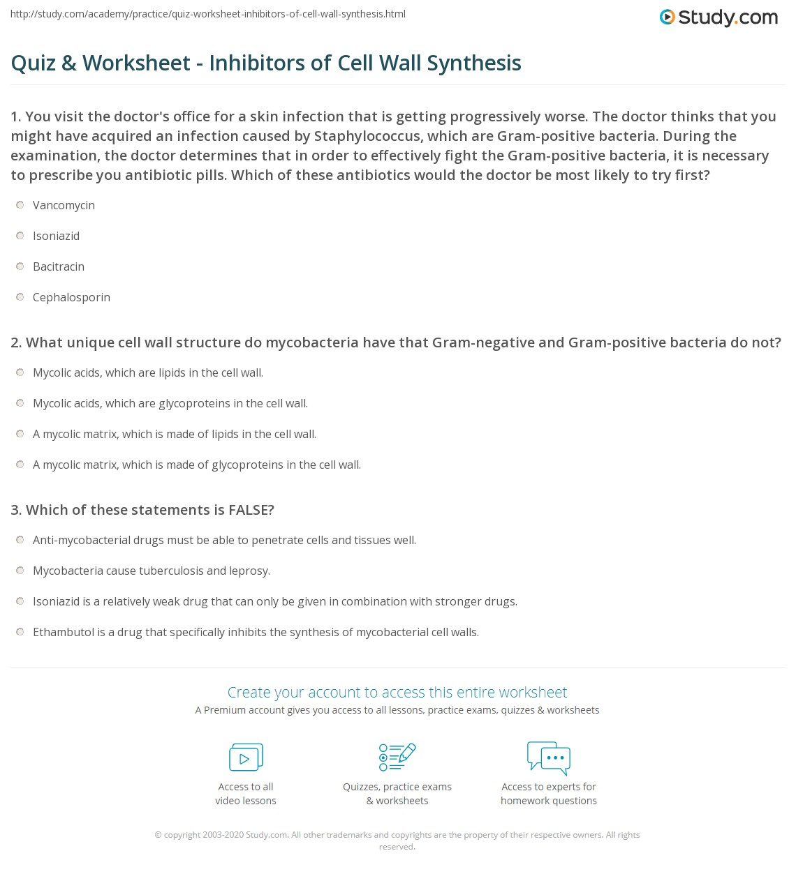 quiz worksheet inhibitors of cell wall synthesis. Black Bedroom Furniture Sets. Home Design Ideas