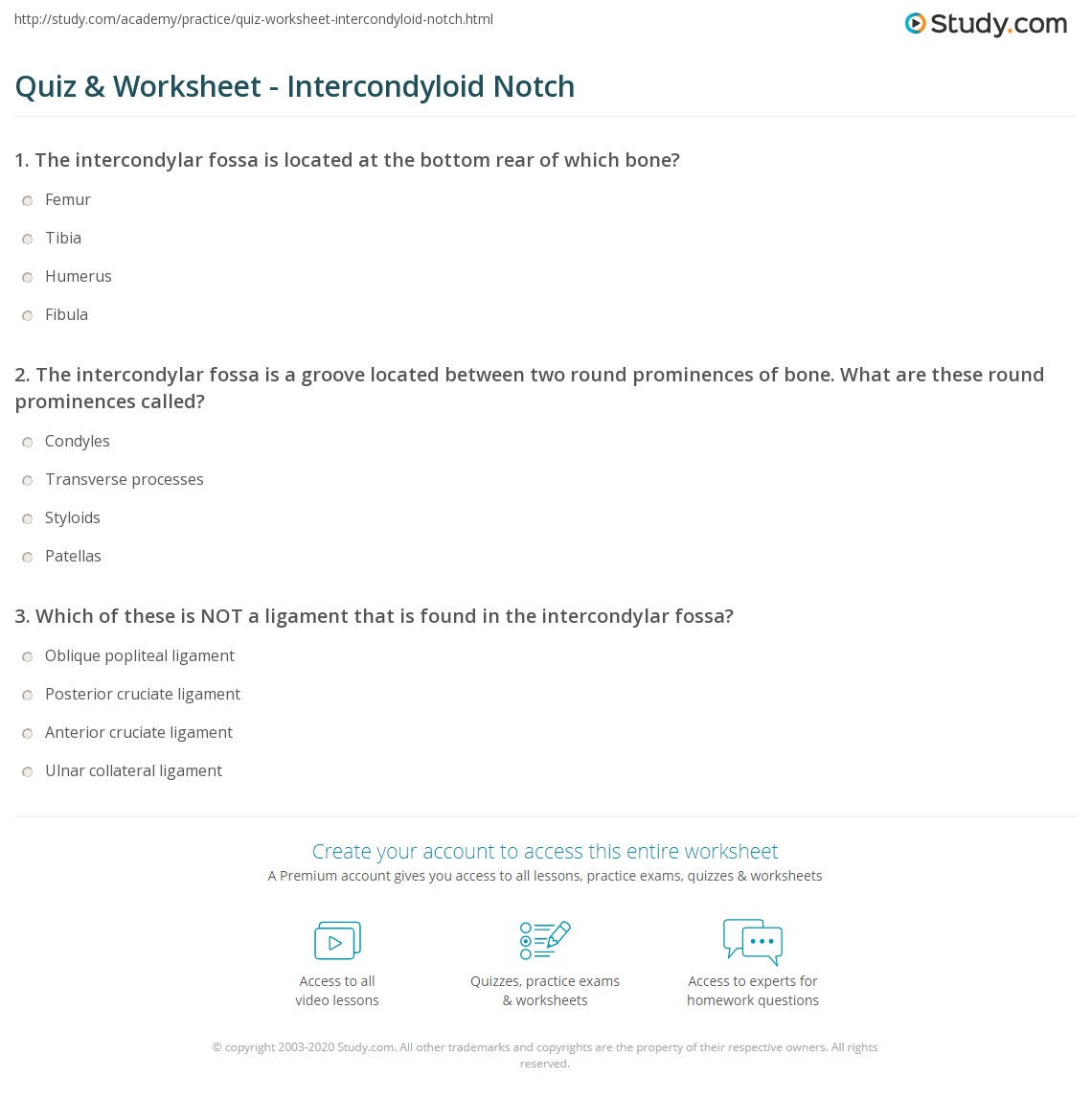 Quiz Worksheet Intercondyloid Notch Study