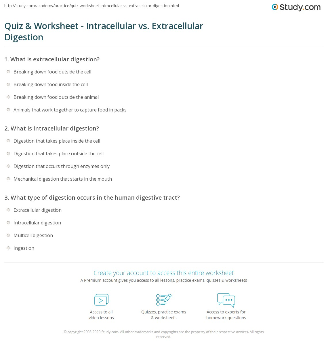 Quiz Amp Worksheet Intracellular Vs Extracellular