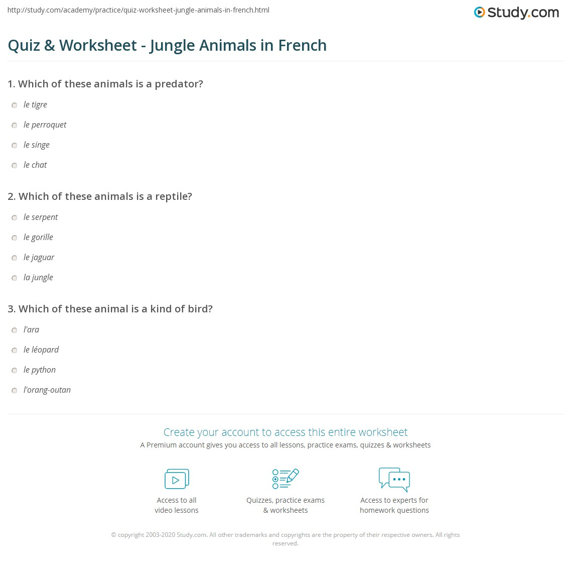 Quiz Worksheet Jungle Animals In French Study