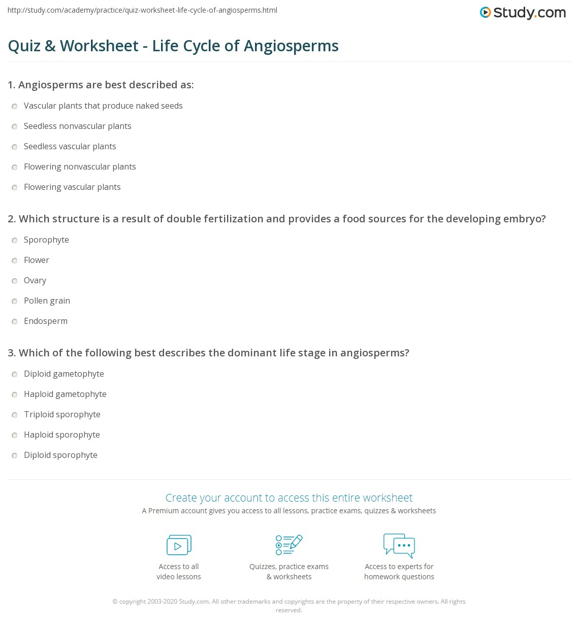 quiz worksheet life cycle of angiosperms. Black Bedroom Furniture Sets. Home Design Ideas