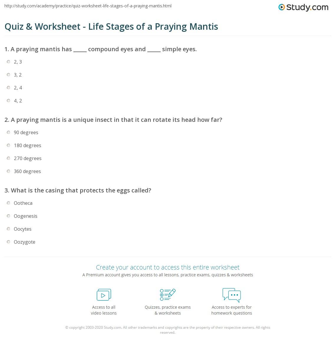 Quiz & Worksheet - Life Stages of a Praying Mantis | Study.com