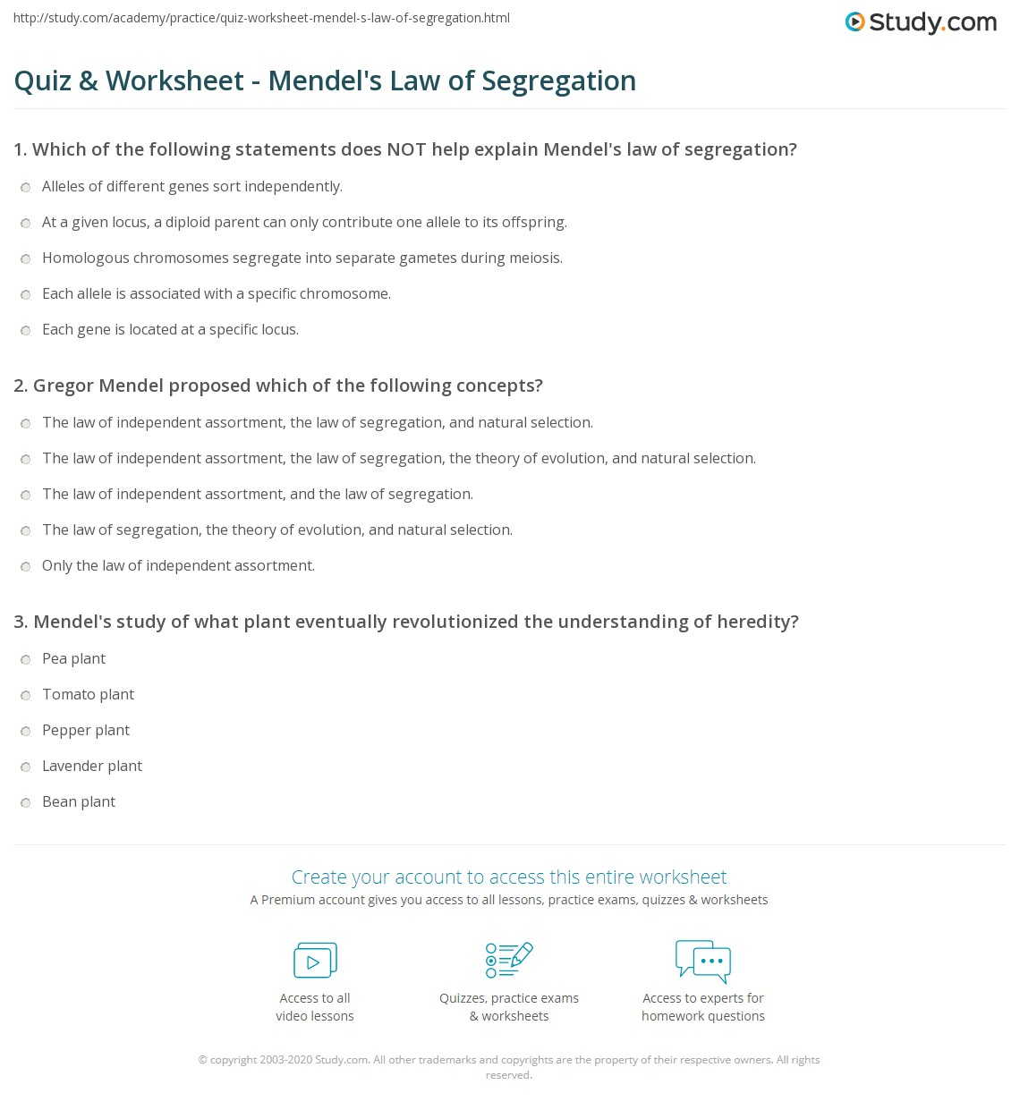 Print Mendel's First Law: The Law of Segregation Worksheet