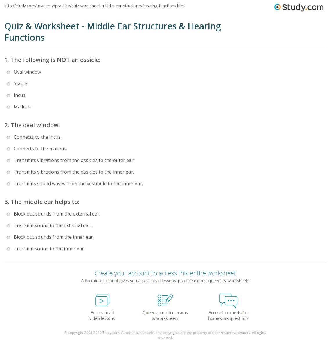 Quiz & Worksheet - Middle Ear Structures & Hearing Functions   Study.com