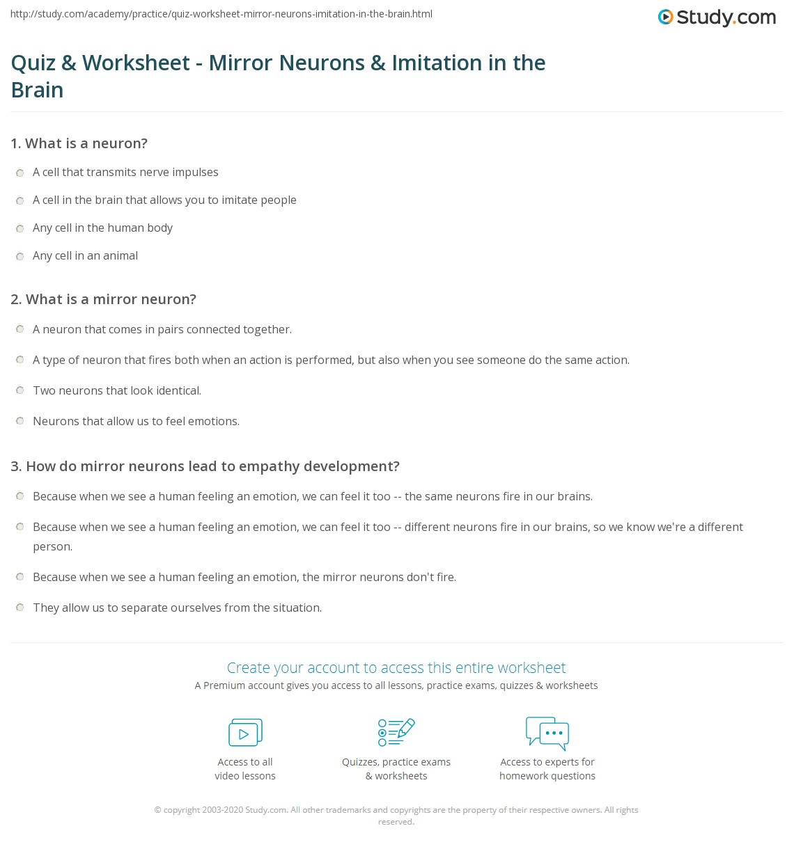 Quiz Worksheet Mirror Neurons Imitation In The Brain Study