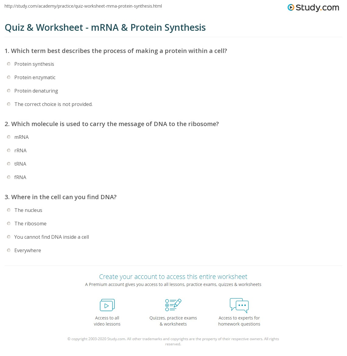 Quiz & Worksheet - mRNA & Protein Synthesis | Study.com