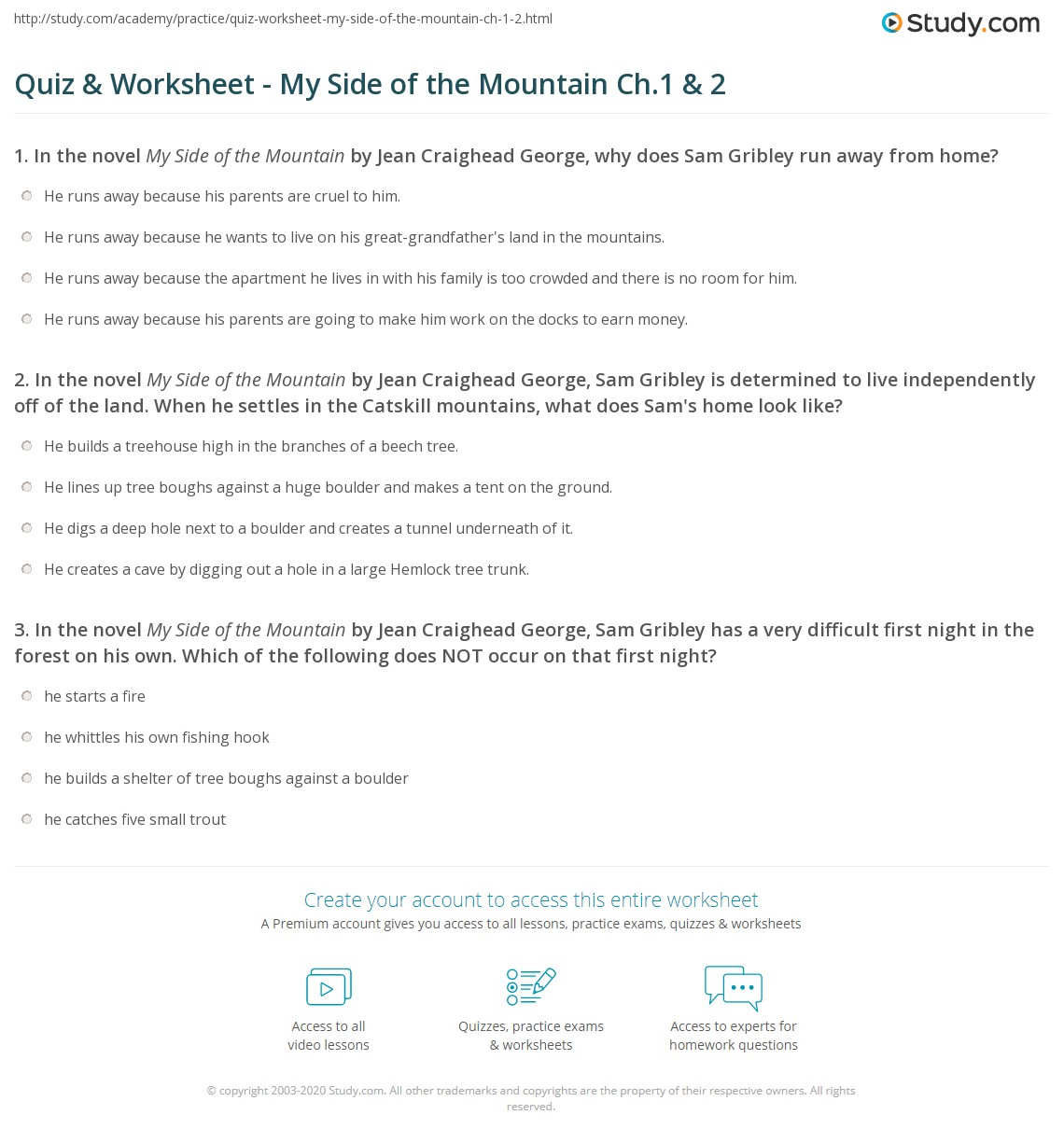 Quiz & Worksheet - My Side of the Mountain Ch.1 & 2 | Study.com