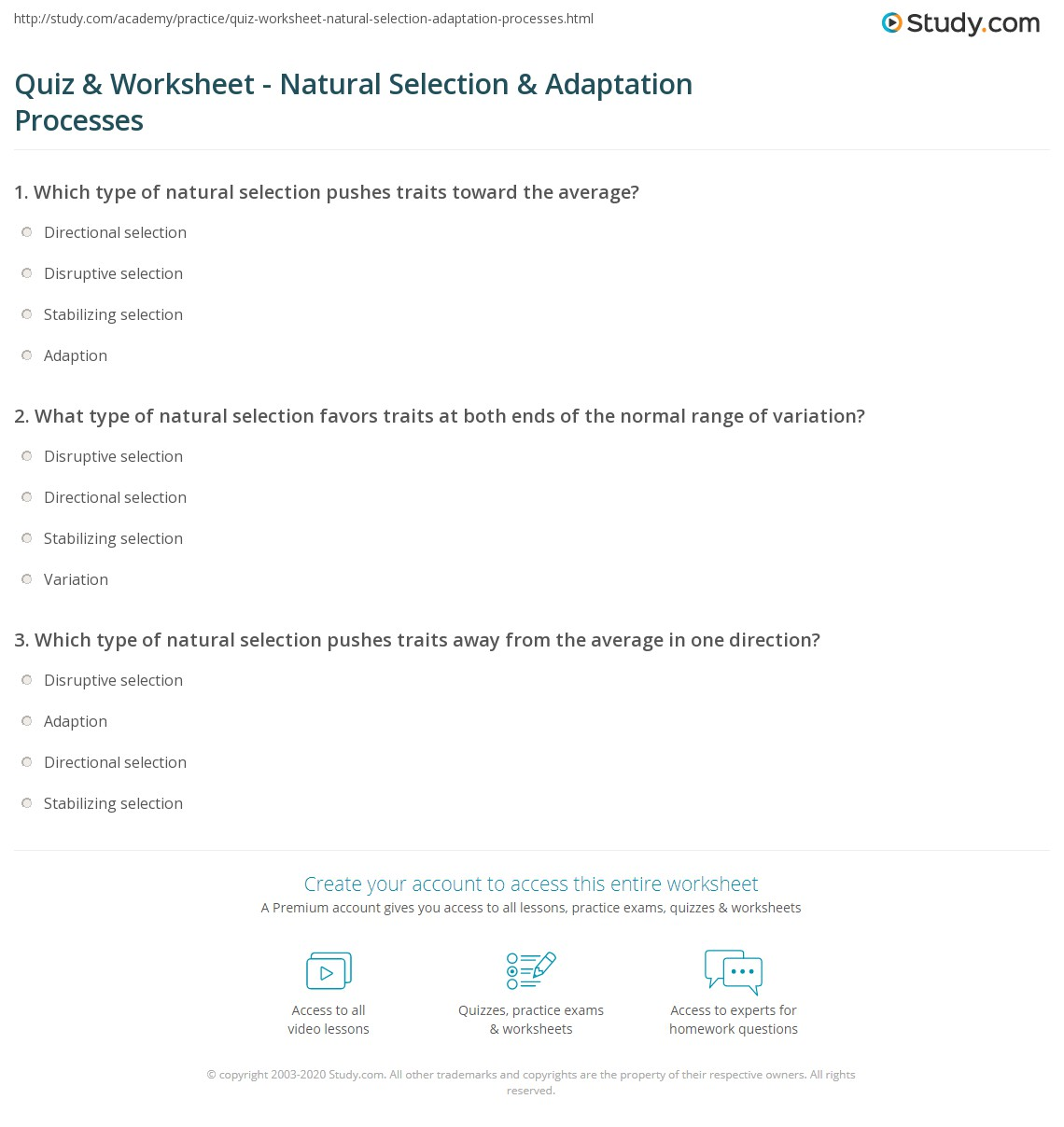 quiz worksheet natural selection adaptation processes. Black Bedroom Furniture Sets. Home Design Ideas