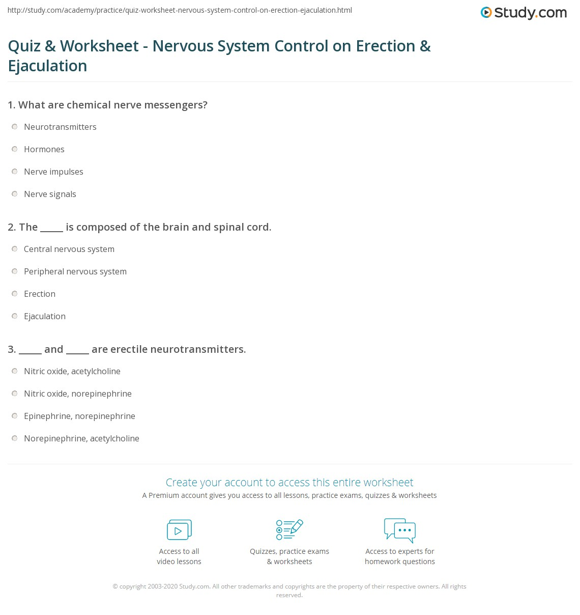 Quiz & Worksheet - Nervous System Control on Erection & Ejaculation ...