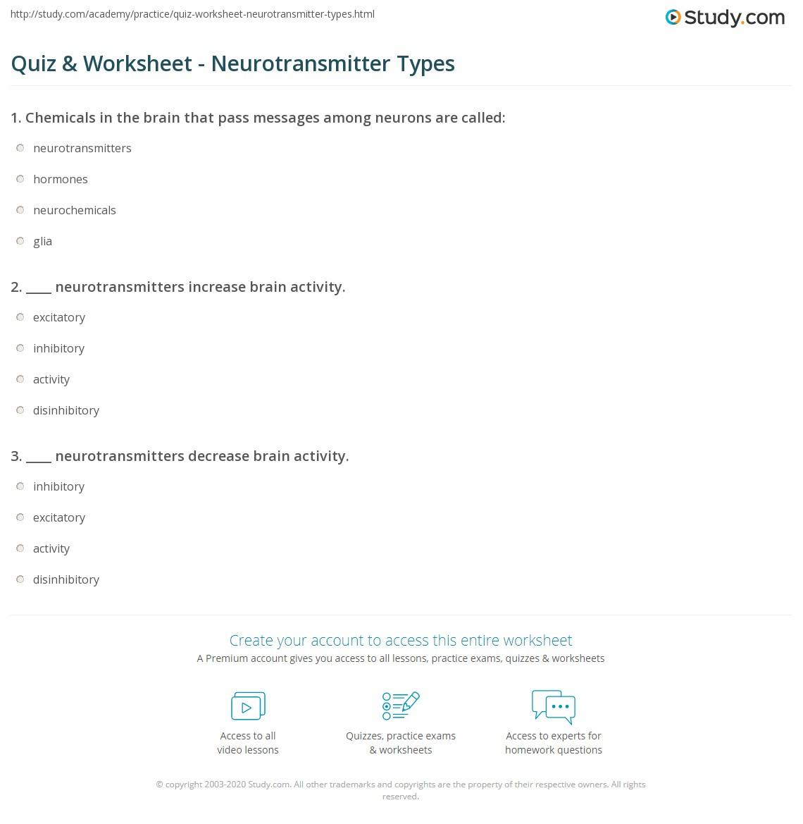 worksheet Neurotransmitters Worksheet quiz worksheet neurotransmitter types study com print of neurotransmitters worksheet