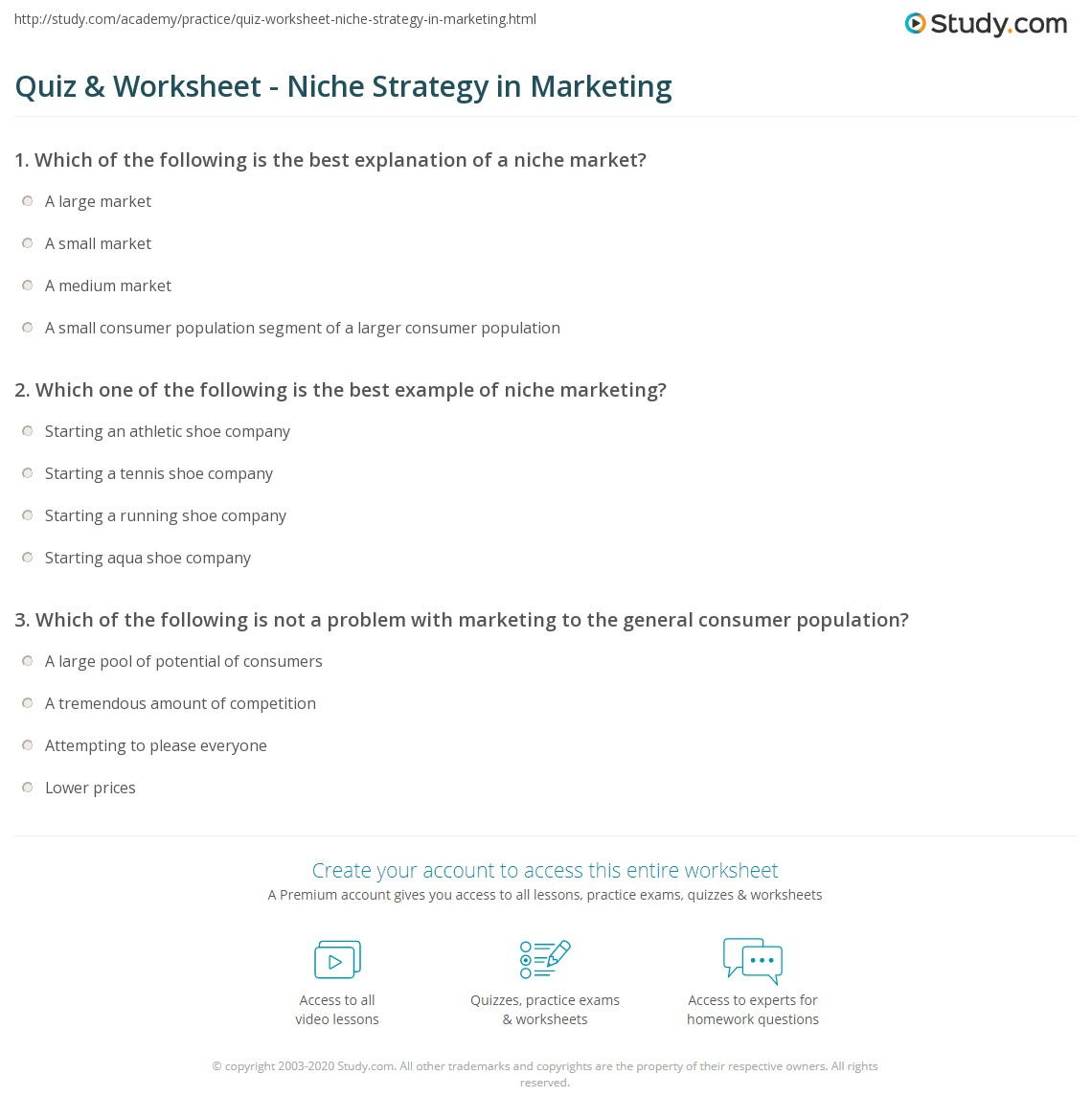 quiz worksheet niche strategy in marketing. Black Bedroom Furniture Sets. Home Design Ideas